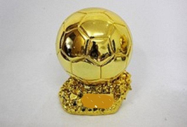 Кубок Золотой мяч, фото 2