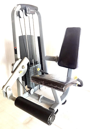 Силовой тренажер для разгибания ног OMEGA SPORT, фото 2