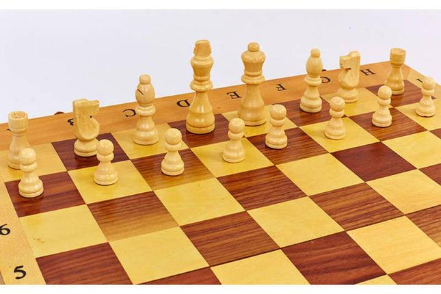 Шахматы 3в 1 (390мм х 195 мм), фото 2
