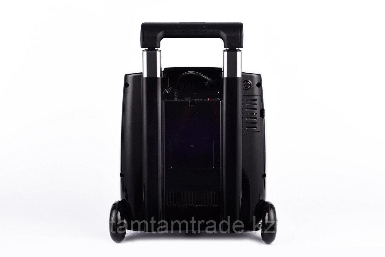 Портативный кислородный концентратор LG 103 - фото 2