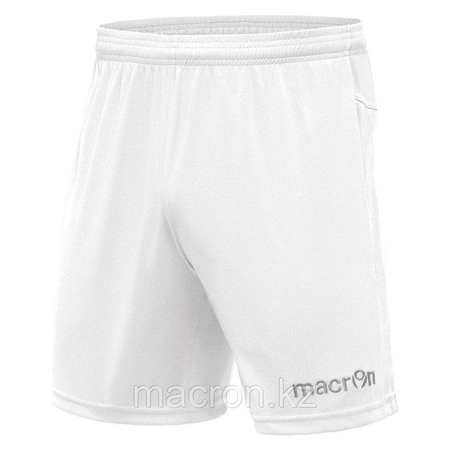 Волейбольные шорты Macron BISMUTH