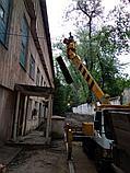 Спил обреска кронирование деревьев, фото 5