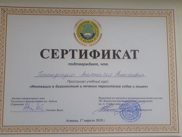Попандопуло Анастасия Николаевна врач общей практики,хирург 1