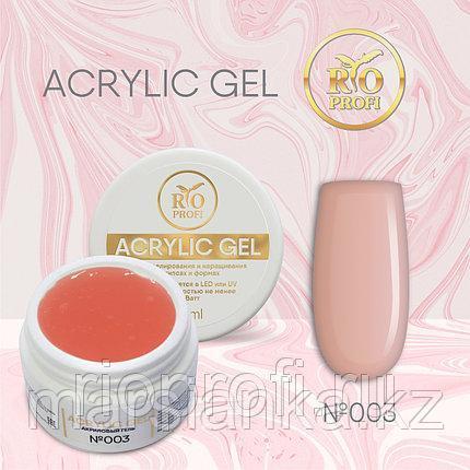 Acryl Gel Rio Profi #03 , 15мл, фото 2