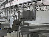 Автоматическая компактная линя резки птицы, фото 7