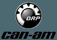 Квадроциклы, багги BRP