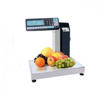 Весы торговые с печатью этикеток МК-15.2-R2L-10-1(товарные), фото 2