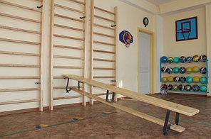 Шведская стенка деревянная 250см+