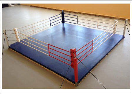 Ринг боксерский на растяжках 7м х 7м (боевая зона 6м х 6м)