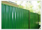 Забор из пронастила, фото 3