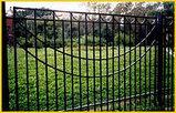Забор кованный, фото 3