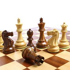 Шахматы и шахматные часы