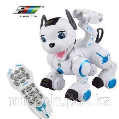 Интерактивная собака - робот на пульте управления DOG K10 ,