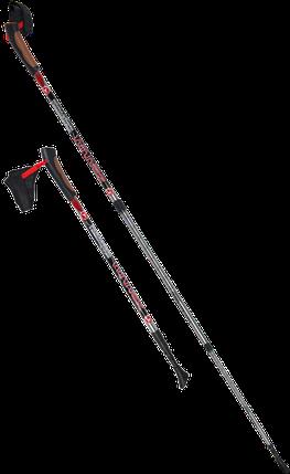 Палки для скандинавской ходьбы Yamaguchi Winner, фото 2