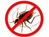 Борная кислота 99,99% (как средство от тараканов)