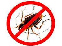 Борная кислота 99,99% (как средство от тараканов), фото 1