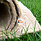 Геотекстиль с семенами трав, фото 4