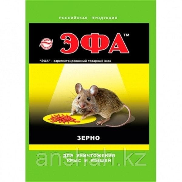 Эфа от крыс и мышей зерно 100 гр.