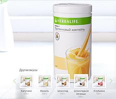 Протеиновый коктейль Формула 1 для сбалансированного питания Дыня