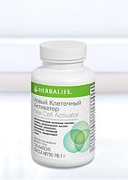 Клеточный Активатор.  Входящие в состав ингредиенты способствуют эффективному усвоению питательных веществ.