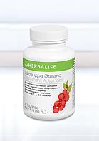 Шизандра - антиоксиданты, витамины, поддержка иммунитета
