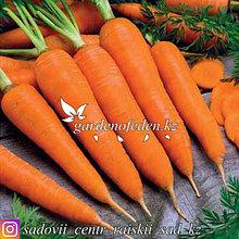"""Профессиональные семена. Морковь """"Королева Осени""""."""