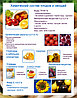 Плакаты Овощи