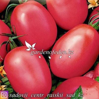 """Профессиональные семена. Томат """"Де Барао розовый"""",20 штук ."""