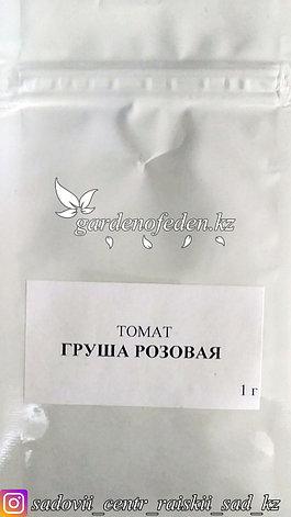 """Профессиональные семена. Томат """"Груша розовая"""",20 штук., фото 2"""