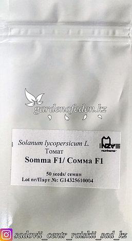 """Профессиональные семена. Томат черри """"Сомма F1"""",5 штук ., фото 2"""
