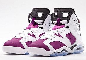 Баскетбольные кроссовки Nike Air Jordan 6 Retro, фото 2