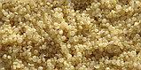 Квиноа (кинва, киноа, лебеда)  - Quinoa, органический цельный злак, 454 г, фото 3