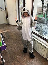 Кигуруми Коала на рост от 175 см.