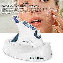 Frozen Skin газожидкостный инжектор с кул лифтингом (cool lifting), фото 2