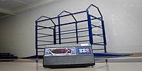 Весы для взвешивания животных (КРС,МРС) до 2 тонн, платформа 2*1 метр с ограждениями