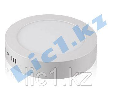 Светодиодная панель NLP2O круглая 12 Вт наружная