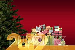 Новогодние каникулы с 28 декабря 2018г. по 14 января 2019г..