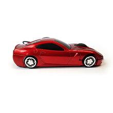 Mouse AViTi CRW-1877 CAR