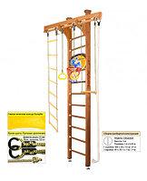 Домашний спортивный комплекс Kampfer Little Sport Ceiling Basketball Shield 3, №2 ореховый