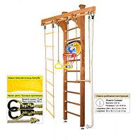 Домашний спортивный комплекс Kampfer Little Sport Ceiling Basketball Shield 2.60, №2 ореховый