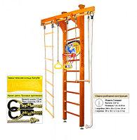 Домашний спортивный комплекс Kampfer Little Sport Ceiling Basketball Shield 2.60, №3 классический