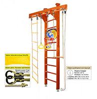 Домашний спортивный комплекс Kampfer Little Sport Ceiling Basketball Shield 2.60, №4 вишневый