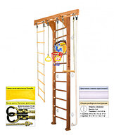 Домашний спортивный комплекс Kampfer Wooden Ladder Ceiling Basketball Shield 3, №2 ореховый