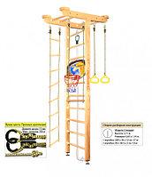 Домашний спортивный комплекс Kampfer Big Sport Ceiling Basketball Shield 2.71, №0 без покрытия