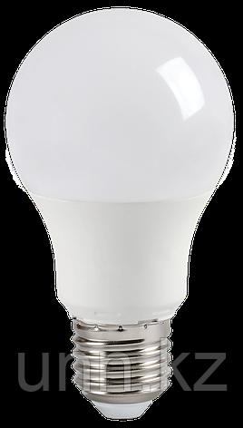 Лампа светодиодная ECO A60 шар 9Вт 230В 6500К E27 IEK, фото 2