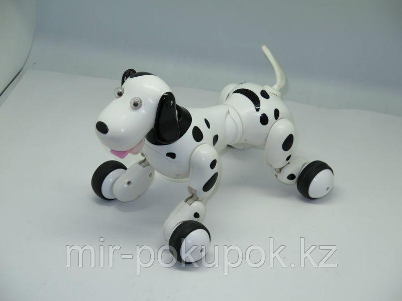 Радиоуправляемая игрушка Робот-собака, Алматы