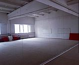 Зеркало в танцевальный зал, фото 2