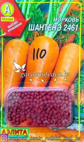 """Семена гранулированные Аэлита. Морковь """"Шантенэ 2461"""", фото 2"""