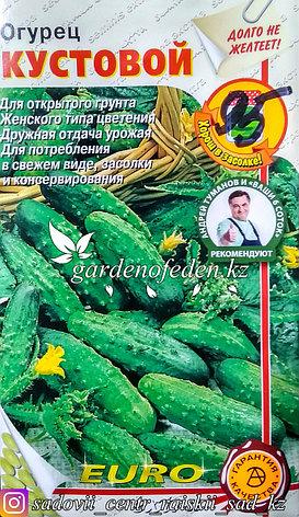"""Семена пакетированные Euro Extra. Огурец """"Кустовой"""", фото 2"""