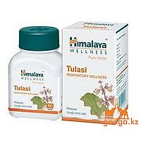 Туласи, Священный Базилик (Tulasi HIMALAYA), 60 таб.